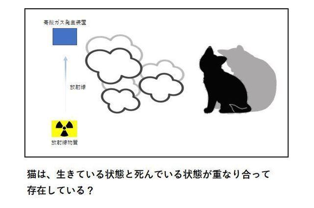 シュレディンガーの猫3.JPG