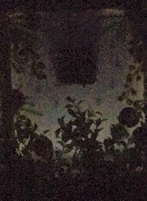 暗い場所.jpg
